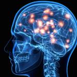 Major Scientific Success: Brain Signals Translated to Speech