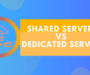 Shared or dedicated hosting: Direct comparison of both hosting models